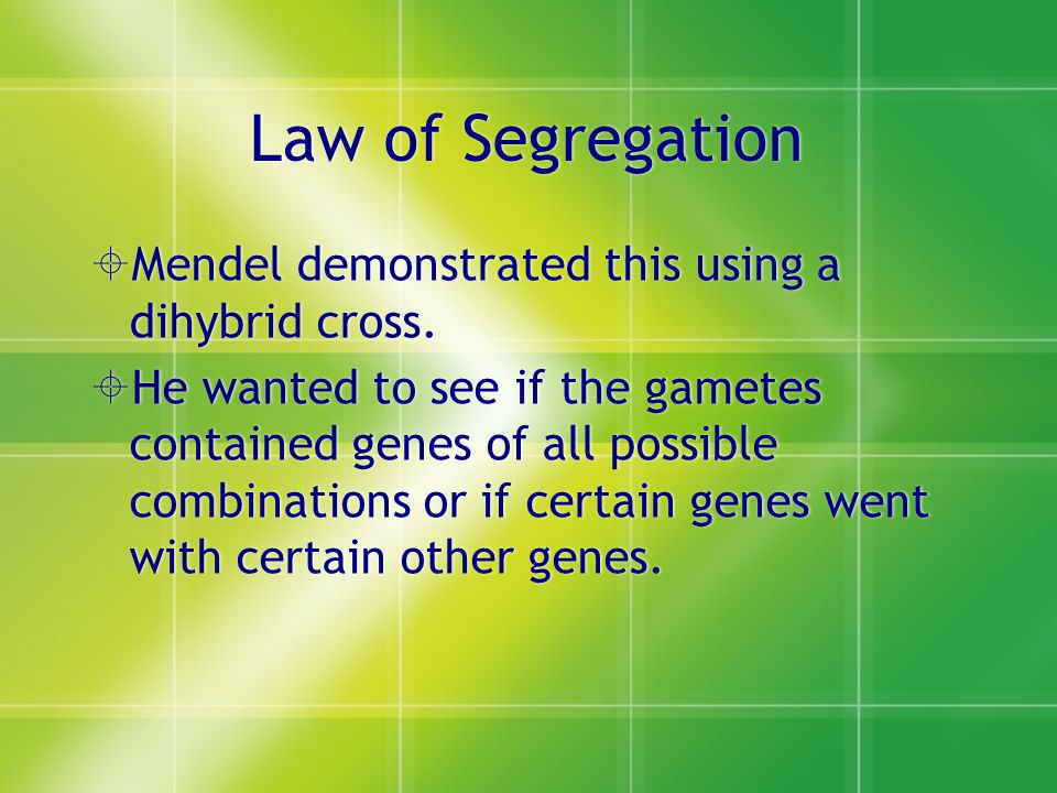 Law of Segregation Mendel demonstrated this using a dihybrid cross.
