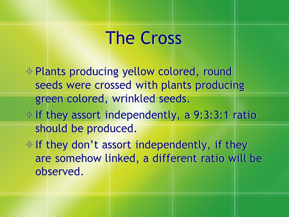 The Cross Plants producing yellow colored, round seeds were crossed with plants producing green colored, wrinkled seeds.