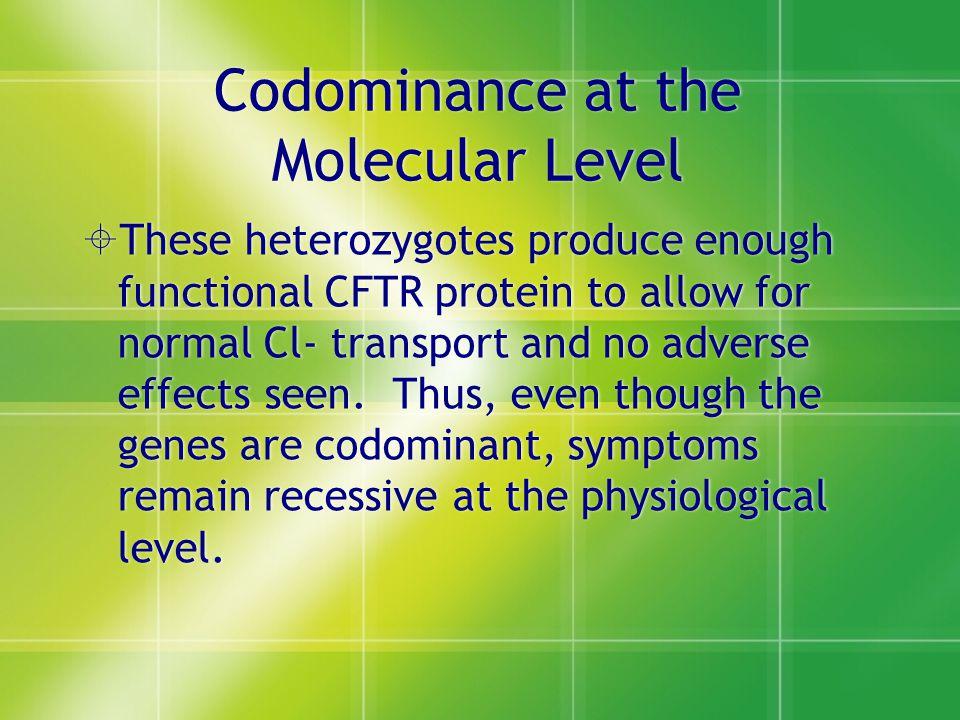 Codominance at the Molecular Level