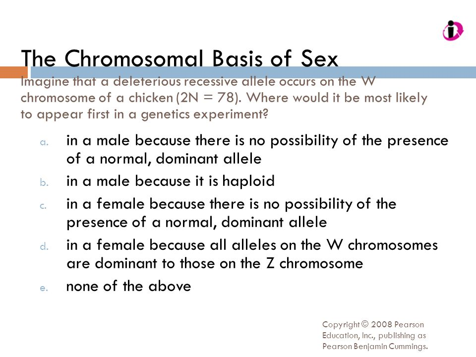 The Chromosomal Basis of Sex Imagine that a deleterious recessive allele occurs on the W chromosome of a chicken (2N = 78). Where would it be most likely to appear first in a genetics experiment