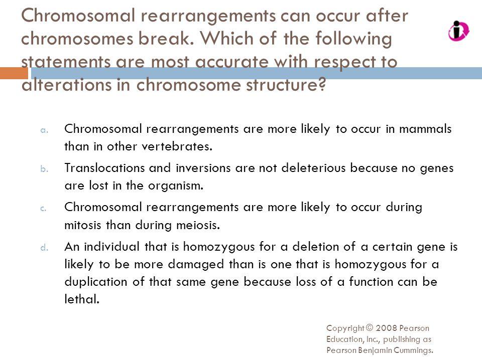 Chromosomal rearrangements can occur after chromosomes break