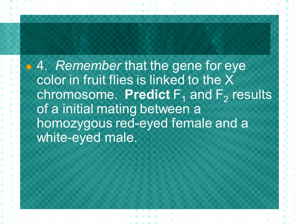 4. Remember that the gene for eye color in fruit flies is linked to the X chromosome.