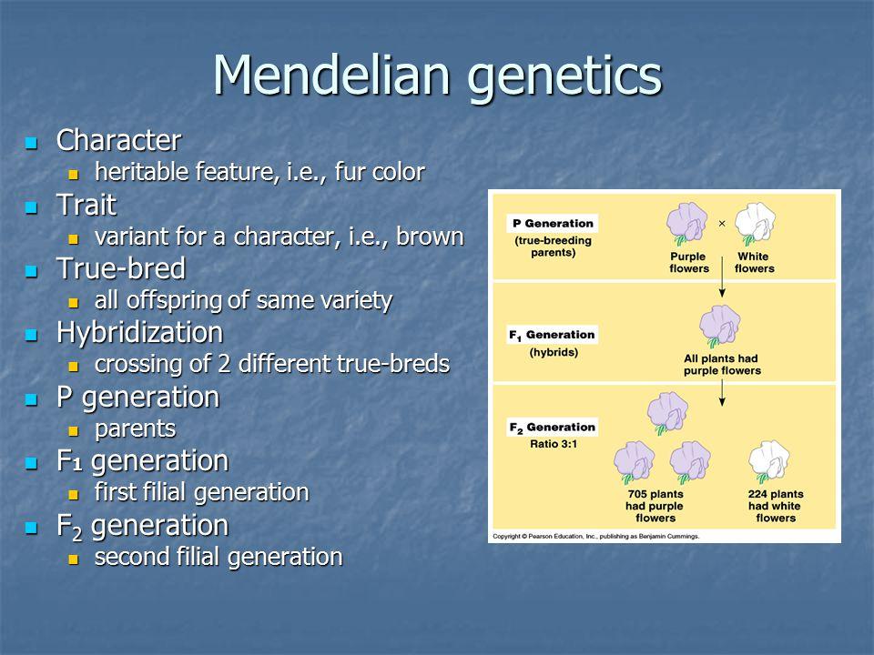 Mendelian genetics Character Trait True-bred Hybridization