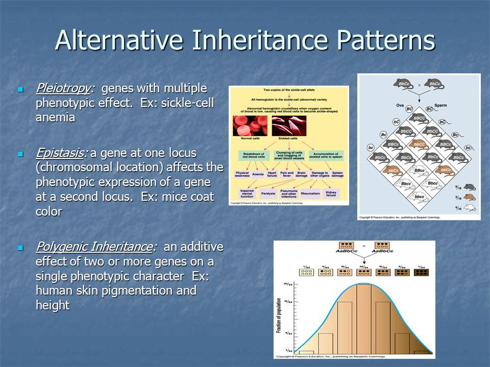 Alternative Inheritance Patterns