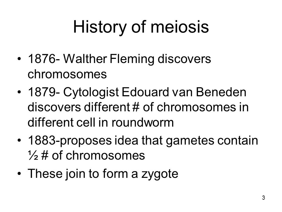 History of meiosis 1876- Walther Fleming discovers chromosomes