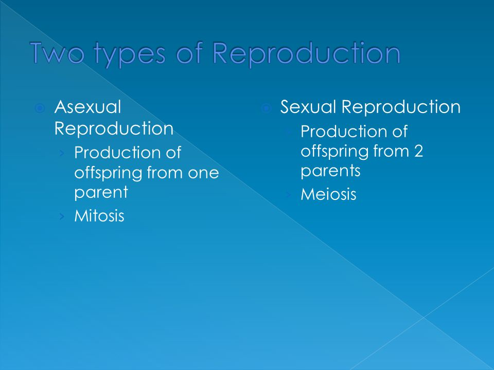 Two types of Reproduction