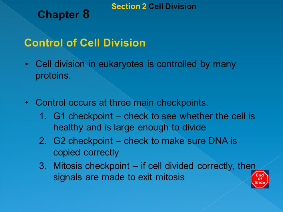Control of Cell Division