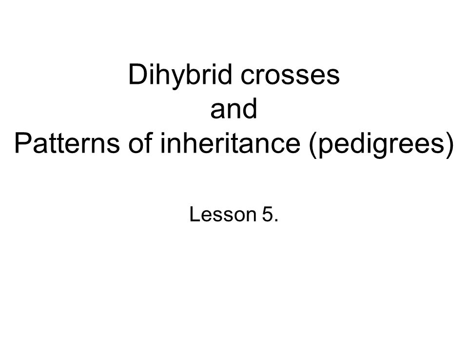 Dihybrid crosses and Patterns of inheritance (pedigrees)