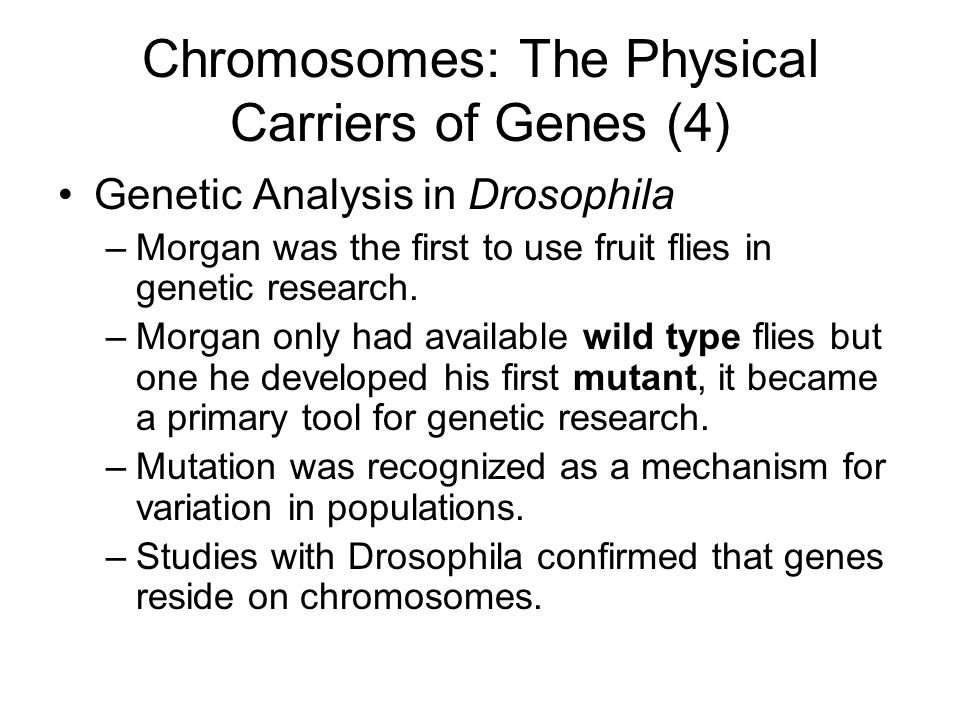 Chromosomes: The Physical Carriers of Genes (4)