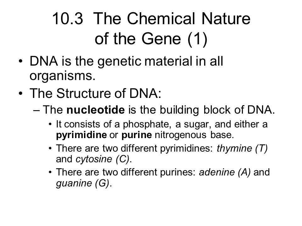10.3 The Chemical Nature of the Gene (1)