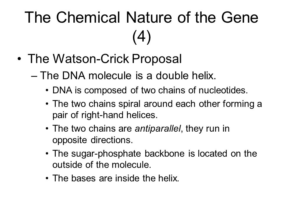 The Chemical Nature of the Gene (4)