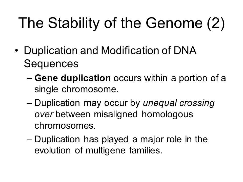The Stability of the Genome (2)