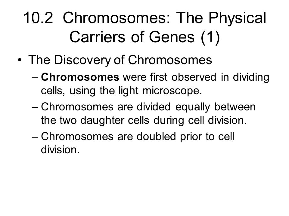 10.2 Chromosomes: The Physical Carriers of Genes (1)