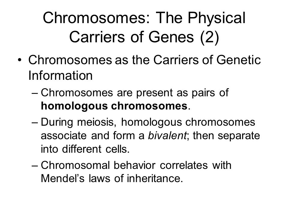 Chromosomes: The Physical Carriers of Genes (2)