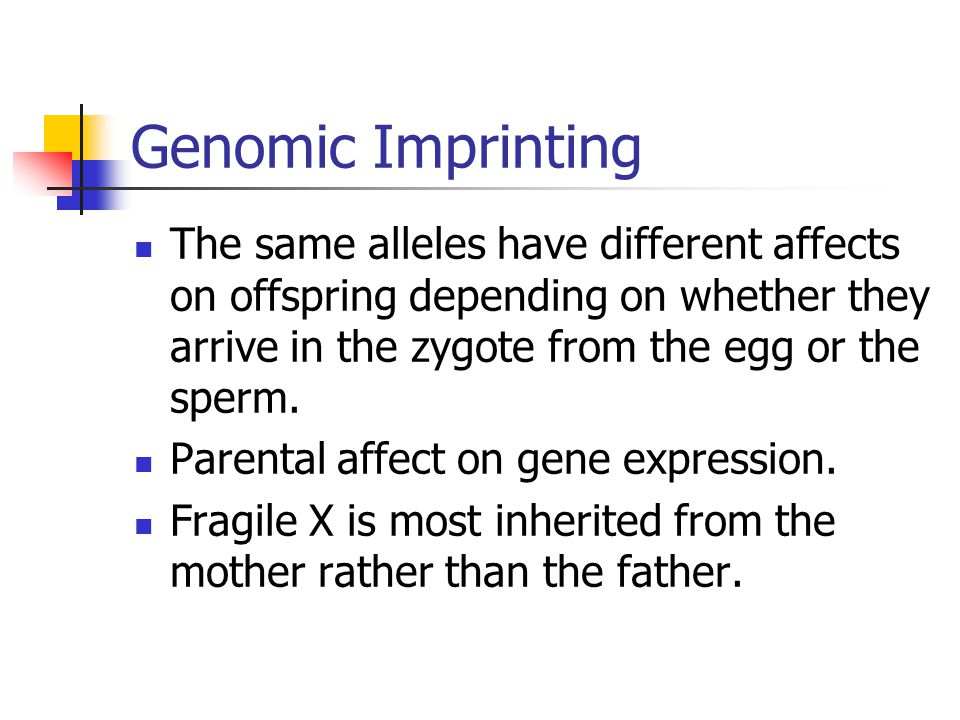 Genomic Imprinting The same alleles have different affects on offspring depending on whether they arrive in the zygote from the egg or the sperm.
