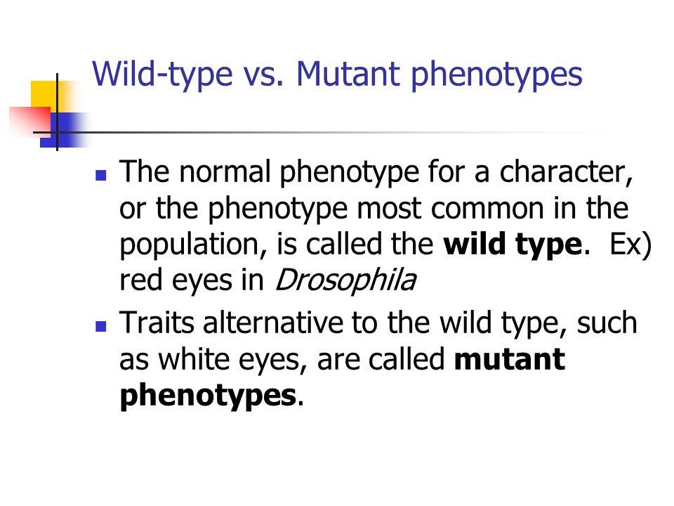 Wild-type vs. Mutant phenotypes