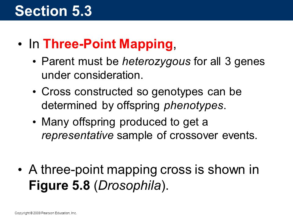 Section 5.3 In Three-Point Mapping,