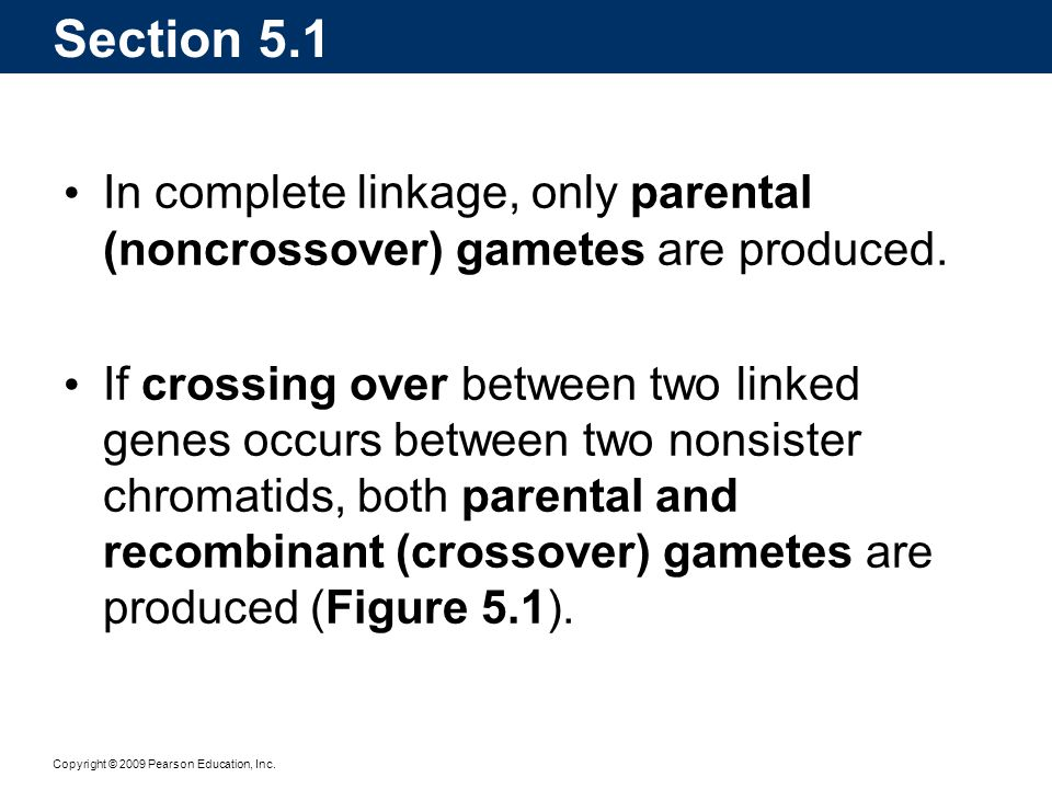 Section 5.1 In complete linkage, only parental (noncrossover) gametes are produced.