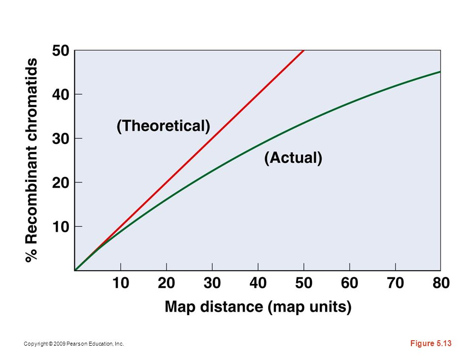 Figure 5-13 The relationship between the percentage of recombinant chromatids that occur and actual map distance when (a) Poisson distribution is used to predict the frequency of recombination in relation to map distance; and (b) there is a direct relationship between recombination and map distance.