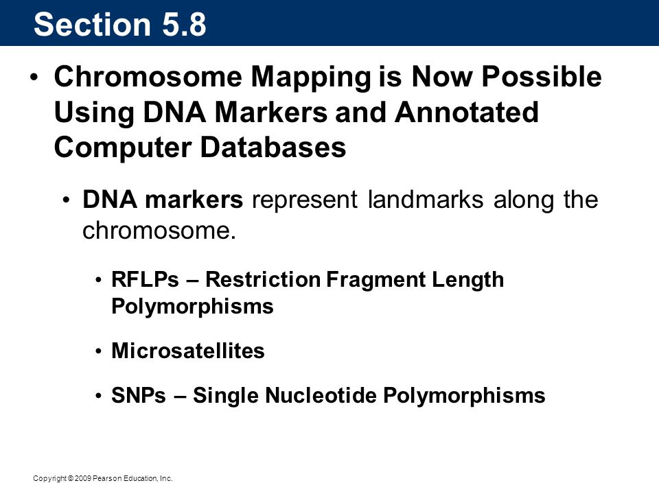 Section 5.8 Chromosome Mapping is Now Possible Using DNA Markers and Annotated Computer Databases.