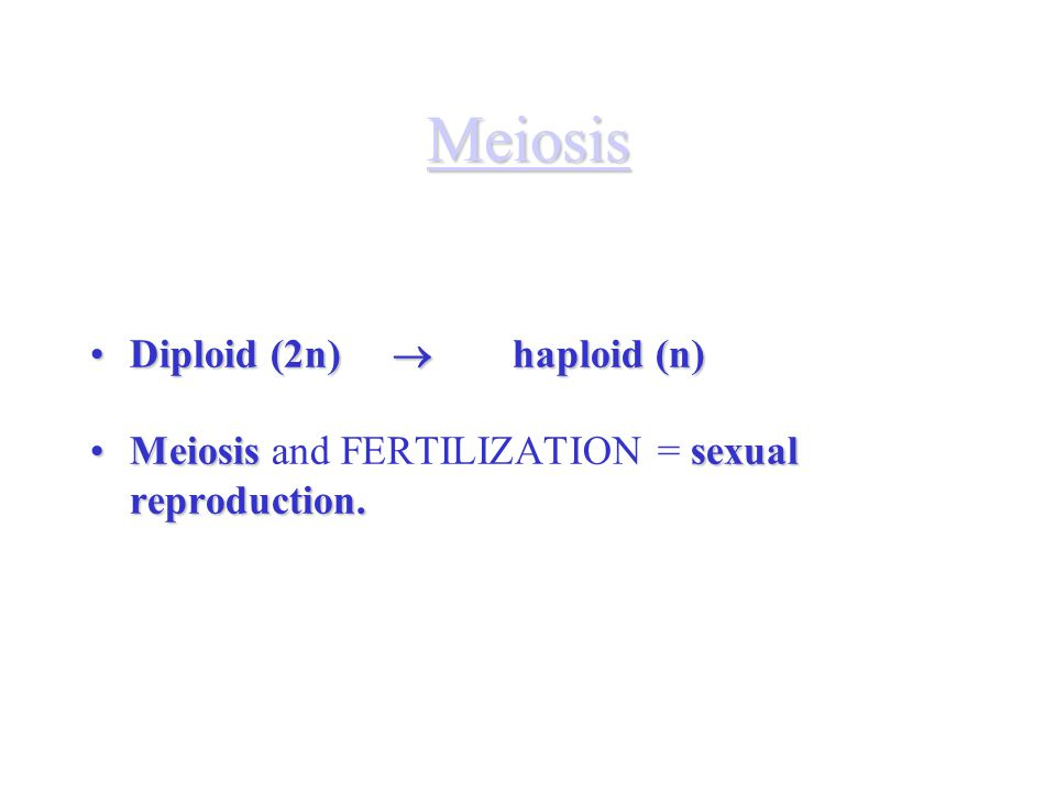 Meiosis Diploid (2n)  haploid (n)