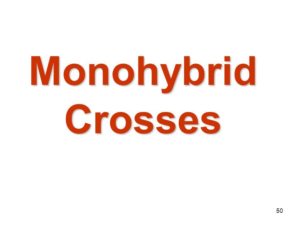 Mendelian Genetics 4/15/2017 Monohybrid Crosses