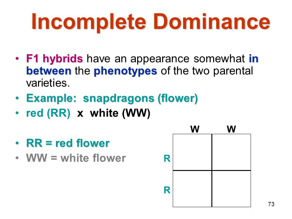 Mendelian Genetics 4/15/2017. Incomplete Dominance. F1 hybrids have an appearance somewhat in between the phenotypes of the two parental varieties.