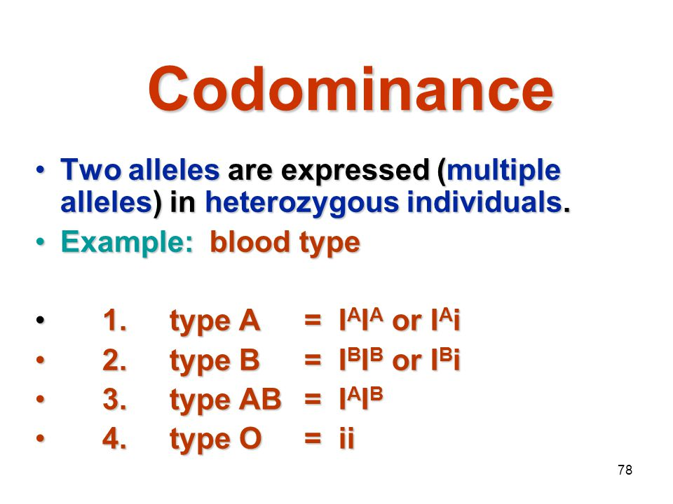 Mendelian Genetics 4/15/2017. Codominance. Two alleles are expressed (multiple alleles) in heterozygous individuals.