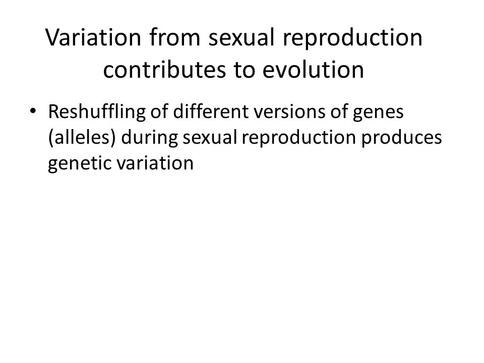 Variation from sexual reproduction contributes to evolution