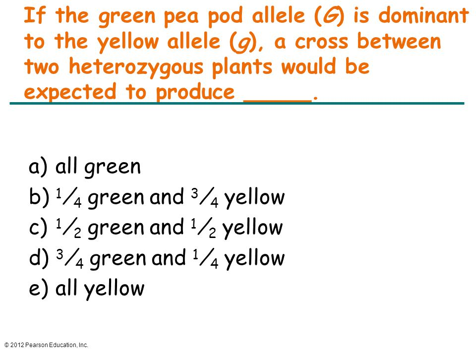 If the green pea pod allele (G) is dominant to the yellow allele (g), a cross between two heterozygous plants would be expected to produce _____.