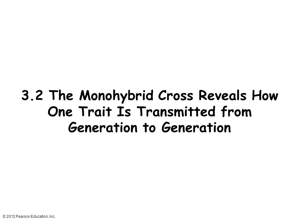 3.2 The Monohybrid Cross Reveals How One Trait Is Transmitted from Generation to Generation