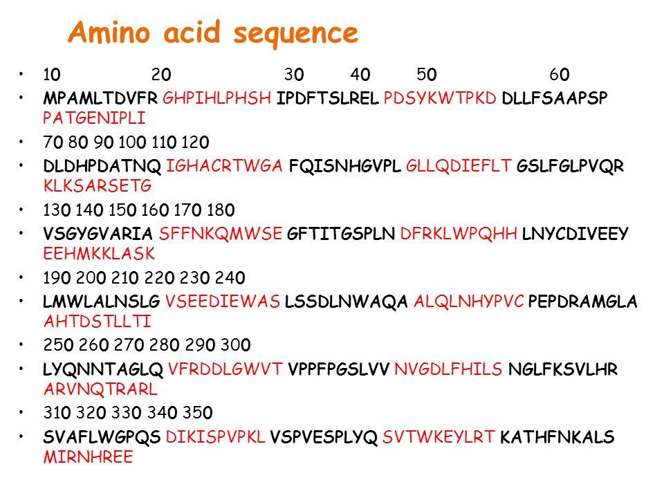 Amino acid sequence 10 20 30 40 50 60. MPAMLTDVFR GHPIHLPHSH IPDFTSLREL PDSYKWTPKD DLLFSAAPSP PATGENIPLI.