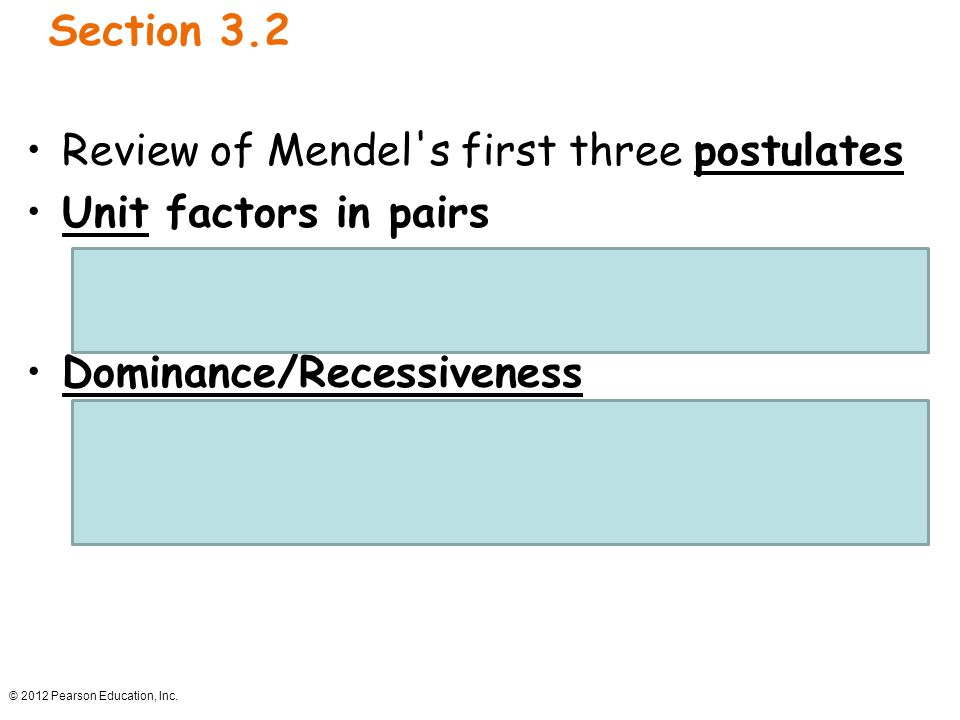 Review of Mendel s first three postulates Unit factors in pairs