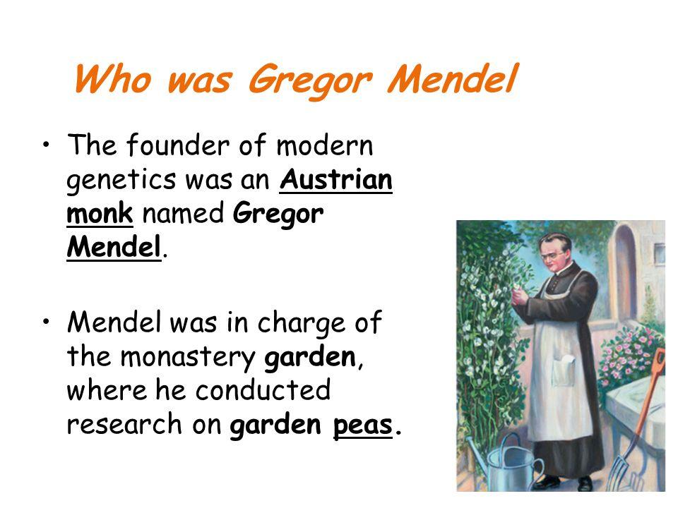 Who was Gregor Mendel The founder of modern genetics was an Austrian monk named Gregor Mendel.
