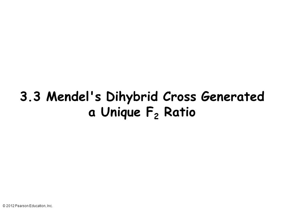 3.3 Mendel s Dihybrid Cross Generated a Unique F2 Ratio
