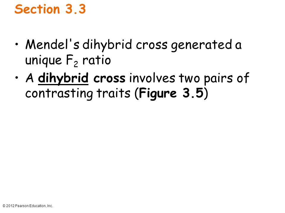 Mendel s dihybrid cross generated a unique F2 ratio