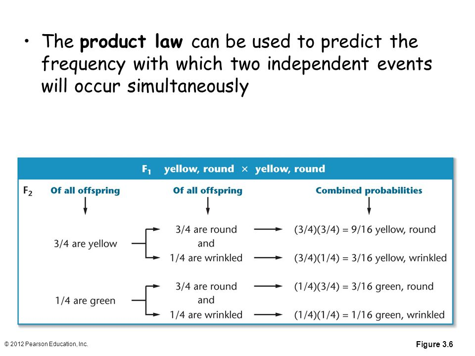 The product law can be used to predict the frequency with which two independent events will occur simultaneously