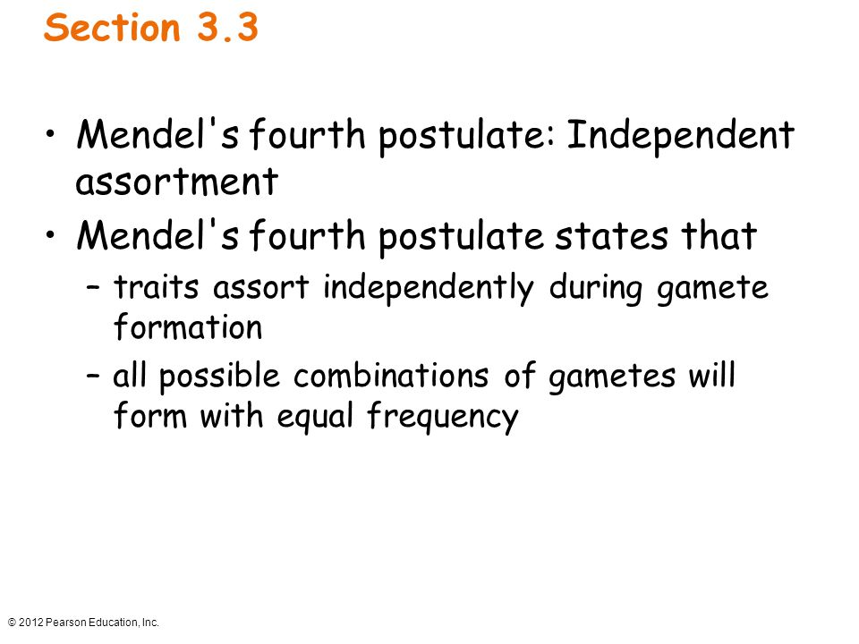Mendel s fourth postulate: Independent assortment