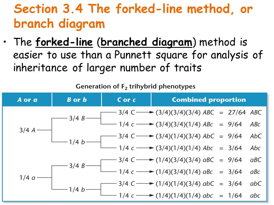 Section 3.4 The forked-line method, or branch diagram