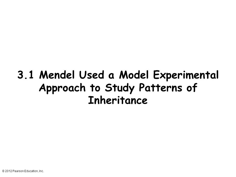 3.1 Mendel Used a Model Experimental Approach to Study Patterns of Inheritance