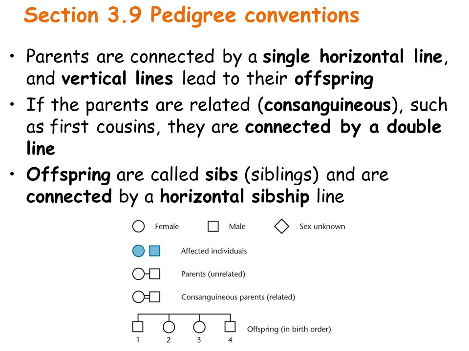Section 3.9 Pedigree conventions