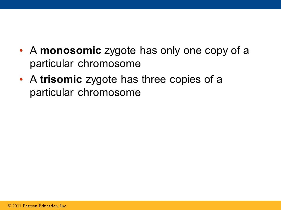 A monosomic zygote has only one copy of a particular chromosome