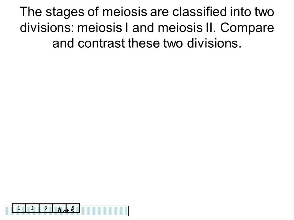 The stages of meiosis are classified into two divisions: meiosis I and meiosis II. Compare and contrast these two divisions.
