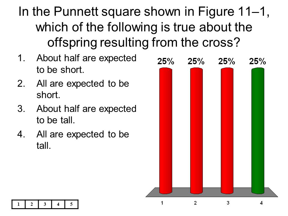 In the Punnett square shown in Figure 11–1, which of the following is true about the offspring resulting from the cross