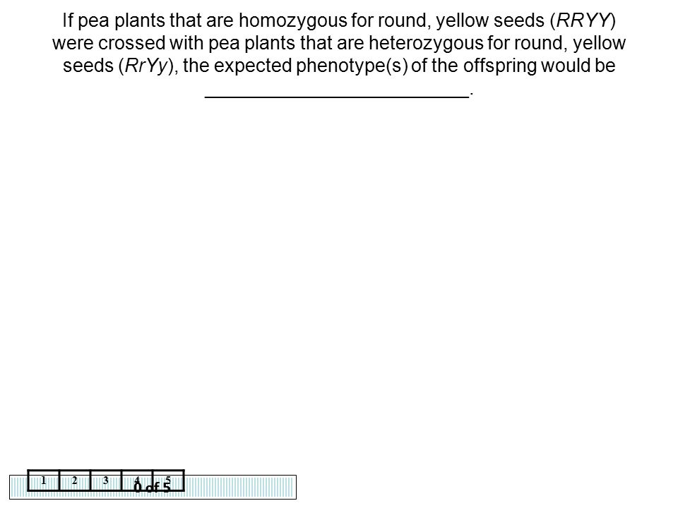 If pea plants that are homozygous for round, yellow seeds (RRYY) were crossed with pea plants that are heterozygous for round, yellow seeds (RrYy), the expected phenotype(s) of the offspring would be _________________________.