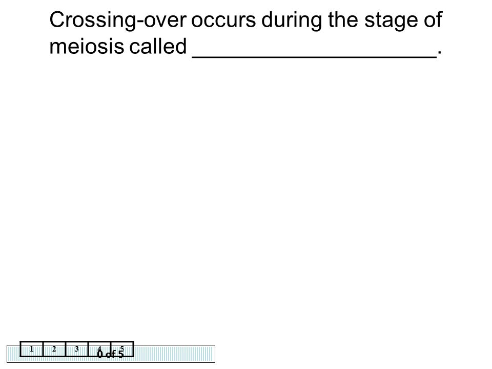 Crossing-over occurs during the stage of meiosis called ____________________.