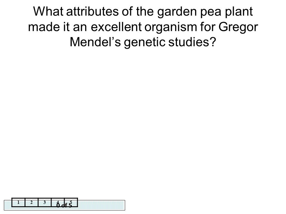 What attributes of the garden pea plant made it an excellent organism for Gregor Mendel's genetic studies