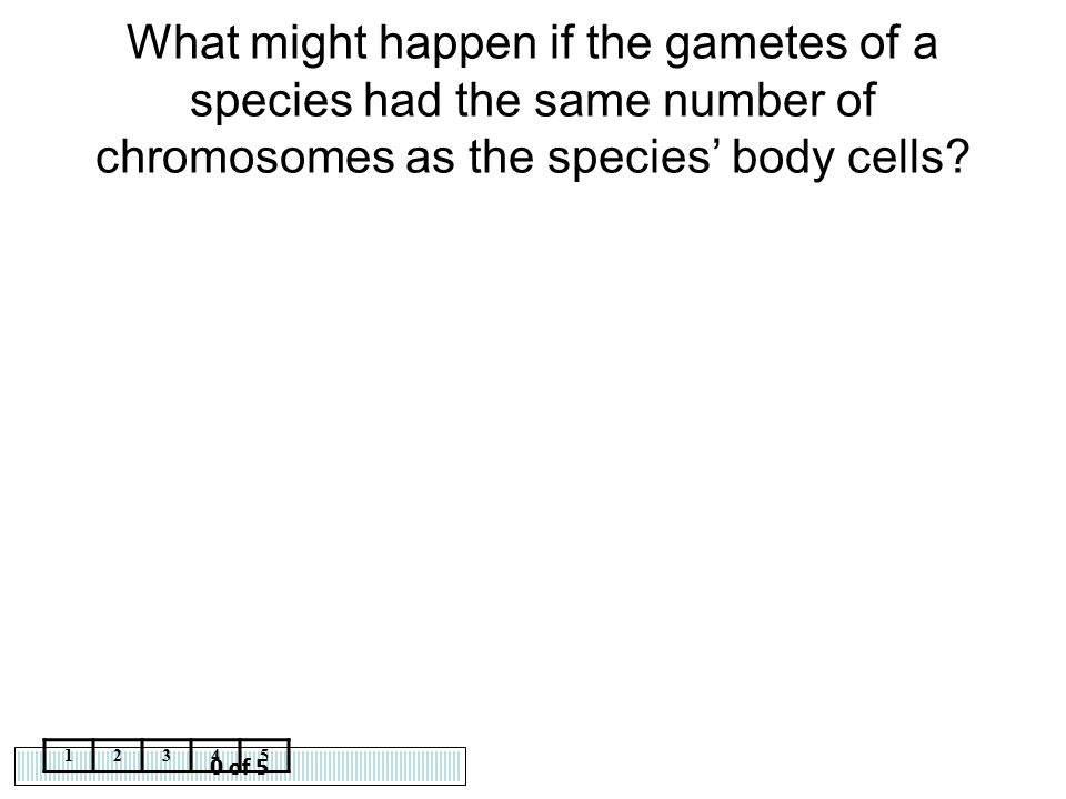 What might happen if the gametes of a species had the same number of chromosomes as the species' body cells