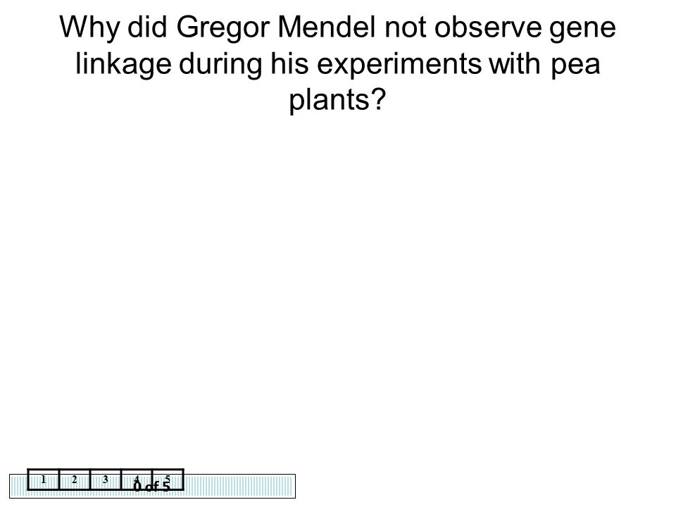 Why did Gregor Mendel not observe gene linkage during his experiments with pea plants