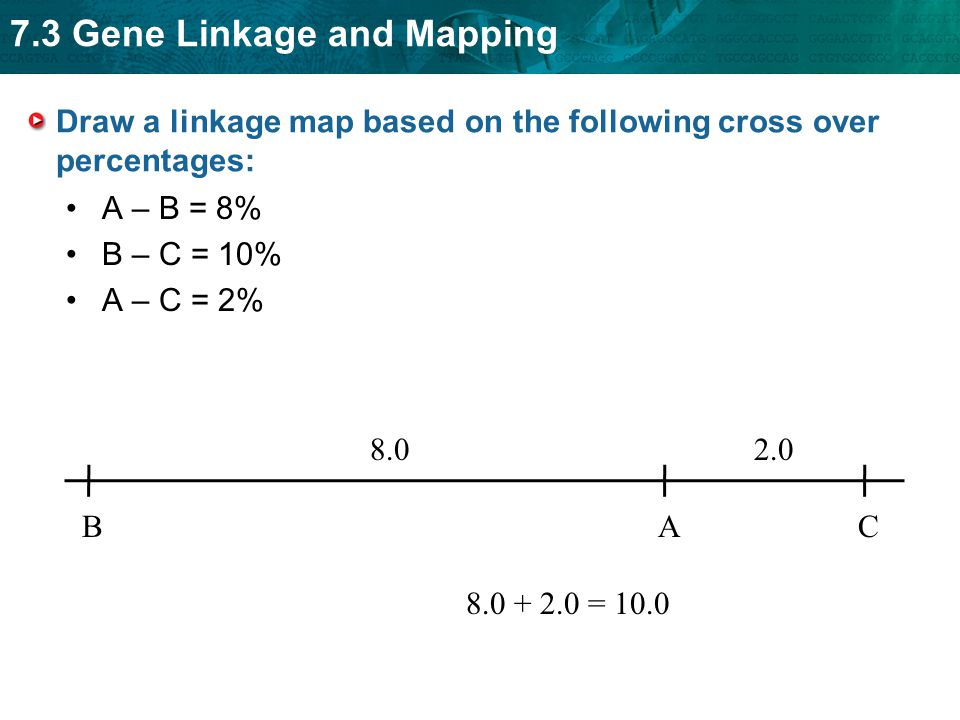 Draw a linkage map based on the following cross over percentages: